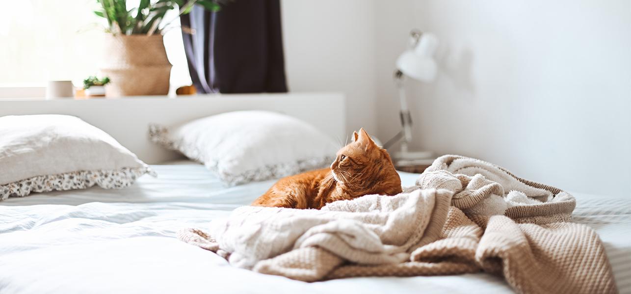 mantenere al meglio il materasso